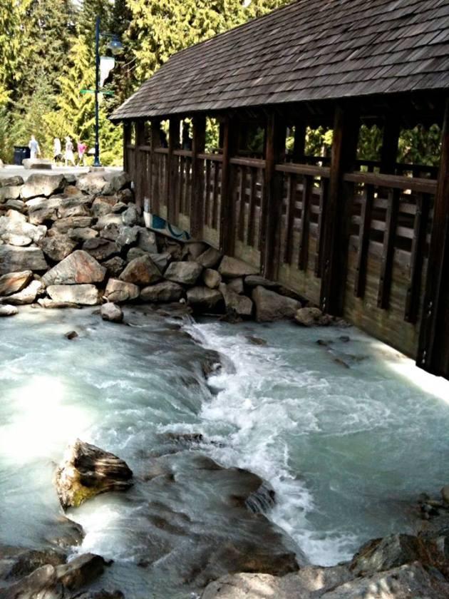 Run - Bridge